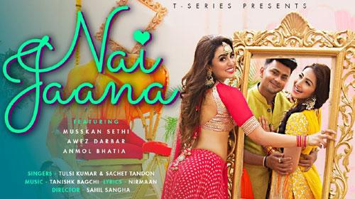 Nai Jaana Song's Mp3 Ringtone Download 2020 - Tulsi Kumar