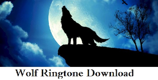 Wolf Howling Ringtone Download - Mp3 Free Mobile Ringtones