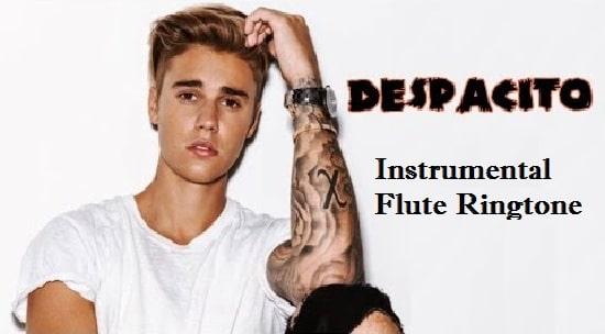 Despacito Instrumental And Flute Ringtone Download - Free Mp3 Tones