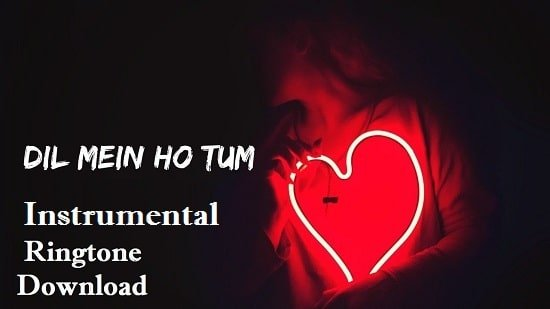 Dil Mein Ho Tum Instrumental Ringtone Download - Flute Mp3 Ringtone